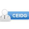 CEIDG-1